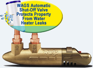 wags_valve_cover